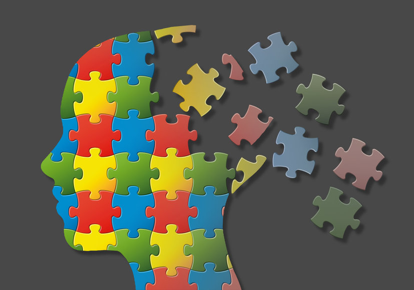 brain-puzzle-pieces-disunity