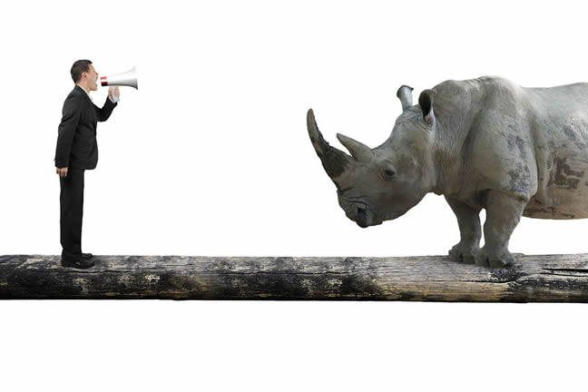 businessman-facing-rhino-Michele-Wucker