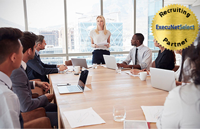 execunetselect-corporate-board-meeting-hanold-associates