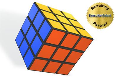 execunetselect-rubix-cube