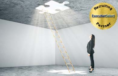 execunetselect-woman-facing-ladder
