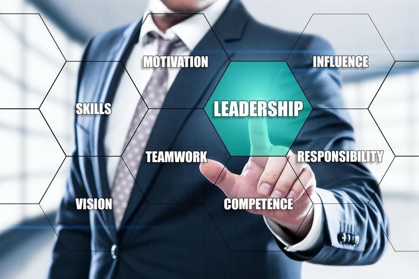 leadership-evergreen-concept-ddi