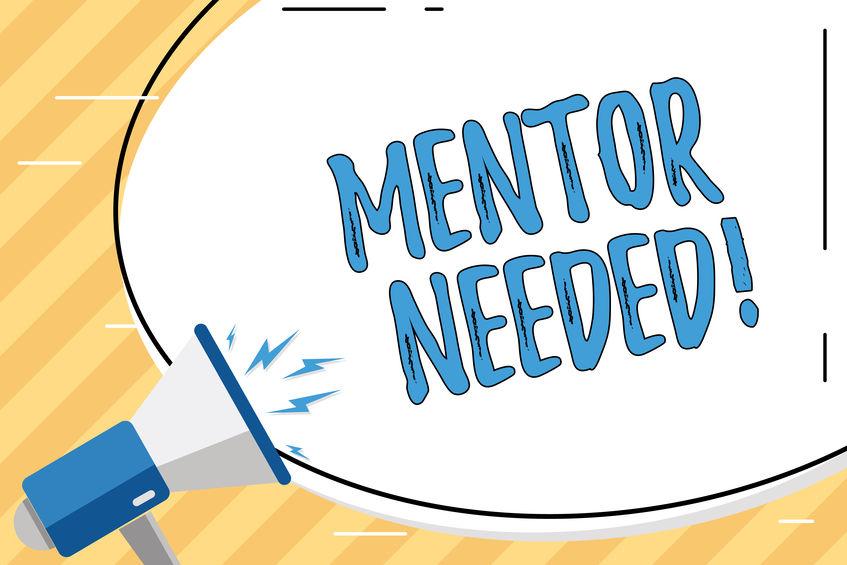 mentor-needed-bull-horn