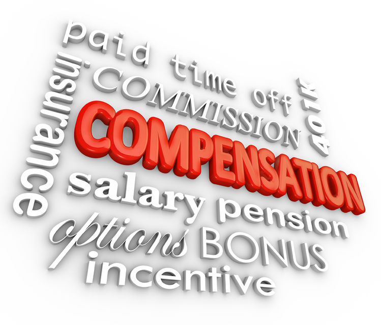 Execunet Critical Components Of Executive Compensation